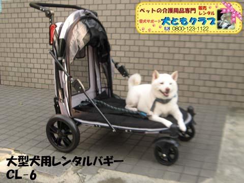 大型犬用レンタルペットバギーCL-6 11.jpg