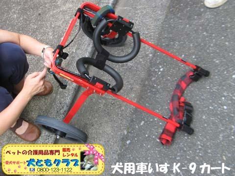 犬用車椅子K9カート トト丸くん用2017082906.jpg
