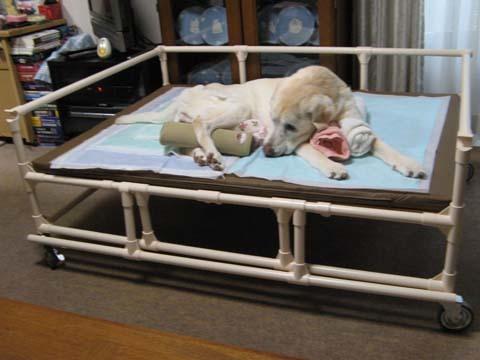 イレクターパイプ製老犬介護ベッド09.jpg