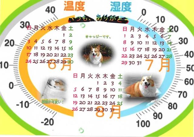 コーギーのきゃっぴーちゃんカレンダー.jpg