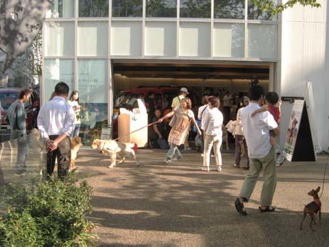 代官山GREEN DOGイベント2012101303.jpg