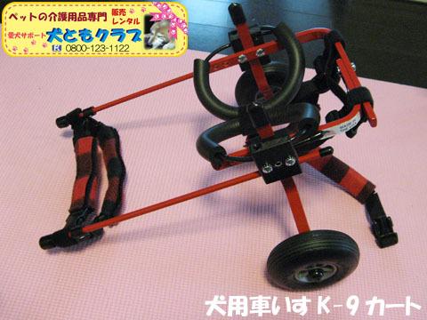 犬用車椅子K-9カート ミニチュアダックスフントのルビアーニちゃん2015041910.jpg