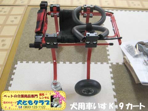 犬用車椅子K9カート トイプードルのパダちゃん2016051704.jpg
