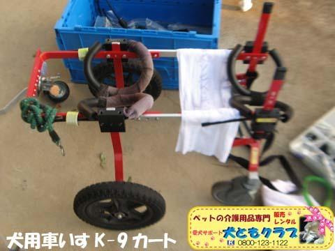 犬用車椅子K9カートゴン太くん用2017110210.jpg