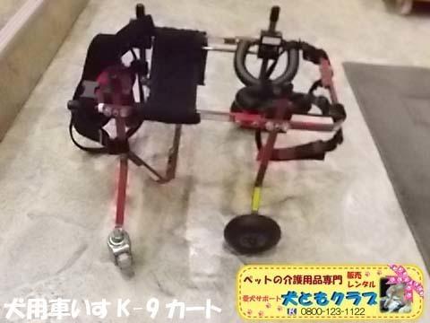 犬用車椅子K9カートトイプードル2020112605.jpg