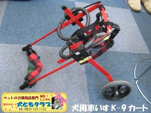 犬用車椅子K9カートミニチュアピンシャのみの吉くん2016042307.jpg