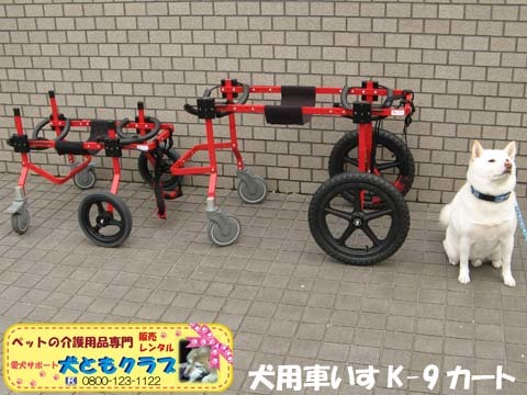 犬用車椅子K9カートXLサイズ2015031806.jpg