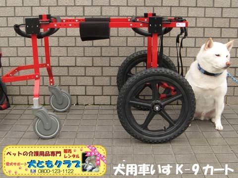 犬用車椅子K9カートXLサイズ2015031807.jpg